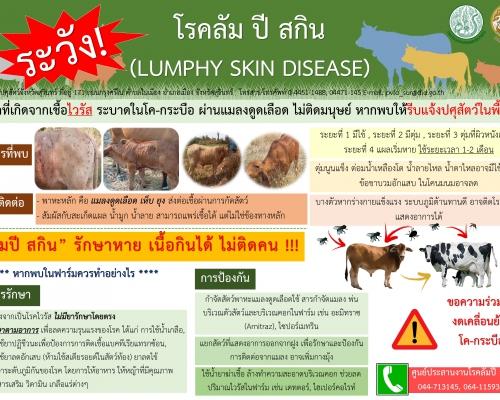 โรคลัม ปี สกิน (LUMPHY SKIN DISEASE)